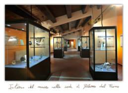 Interno del Museo dei Brettii e del Mare a Palazzo del Trono