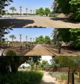 Oasis Garden il giardino a 3 livelli