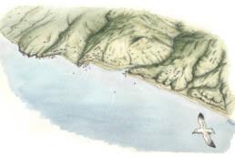 Costa Cetrarese III sec. a.C.