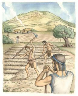 Scena agricola Brettia, sullo sfondo il Monte Serra