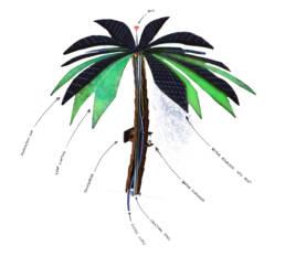 Techno Palm detail